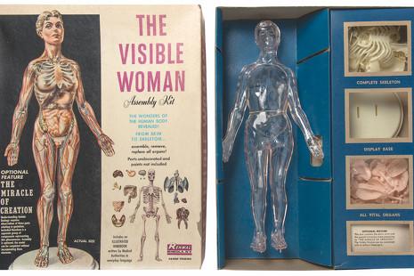 Explorar el cuerpo humano: ¿ciencia, arte o pura necesidad?