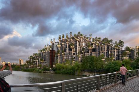Ecologismo visionario: Shanghái crea sus propias colinas para llenarse de árboles