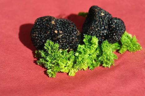 10 deliciosos platos que incluyen trufa, el diamante negro de la gastronomía